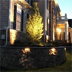 Illuminate focal trees and walls with our low voltage lighting system.